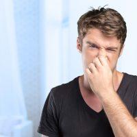 Odeur suspecte dans la maison : comment reconnaître une infestation de rongeurs?