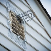Wire mesh screens: an effective rodent control solution?