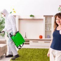 Pest Control: How to Choose Between Natural and Chemical Pesticides